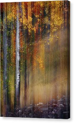 Mid-october Canvas Print