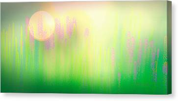 Expressionism Canvas Print - Mid Summer Morning by Bob Orsillo