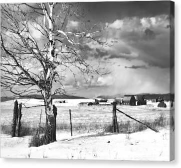 Surreal Barn Canvas Print - Mid-winter Moonlight by Theresa Tahara