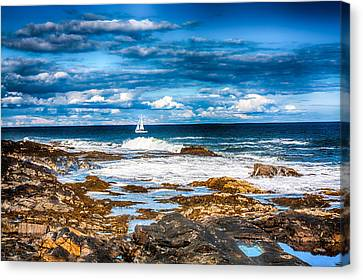 Midday Sail Canvas Print by Fred Larson
