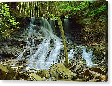 Middle Branch Falls Lower Tier #1 Canvas Print