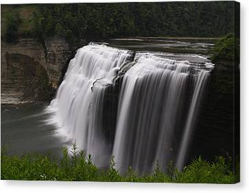 Middle Waterfalls Canvas Print by David Simons