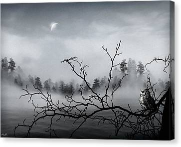 Midnight Beauty Canvas Print by Lourry Legarde