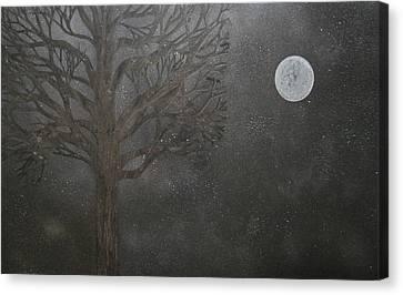 Midnight Calm Canvas Print by Drew Shourd