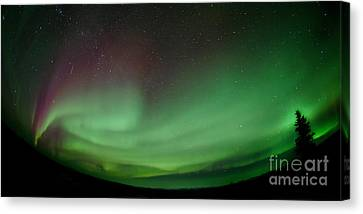 Midnight Dome Canvas Print by Priska Wettstein