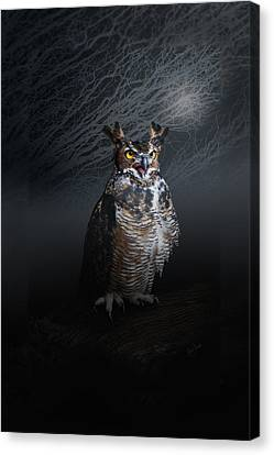 Midnight Guardian Canvas Print by Renee Forth-Fukumoto