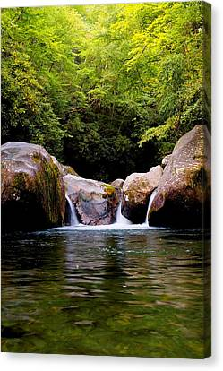 Midnight Hole Crystal Clear Waters Canvas Print by Carol R Montoya