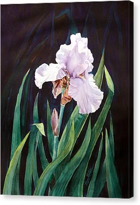 Canvas Print featuring the painting Midnight Iris by Karen Mattson