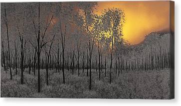 Midnight Canvas Print by Justin  Strom