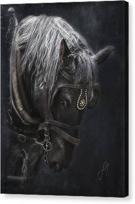 Midnight Silver Canvas Print