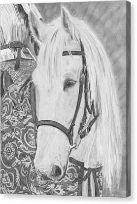 Midsummer Knight Majesty Canvas Print