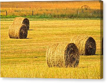 Haybales Canvas Print - Midwest Farming by Frozen in Time Fine Art Photography