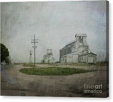 Midwest Prairie Feed Grain Canvas Print