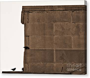 Canvas Print featuring the photograph Migration Layover by Lin Haring