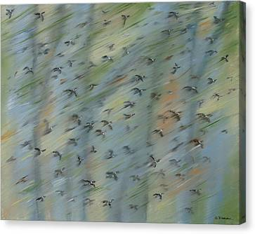 Migratory Geese Moon April Canvas Print by Ethel Vrana
