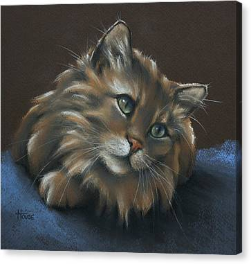 Canvas Print featuring the drawing Miko by Cynthia House