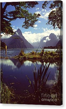 Milford Sound In New Zealand's Fiordland National Park Canvas Print by Alex Cassels