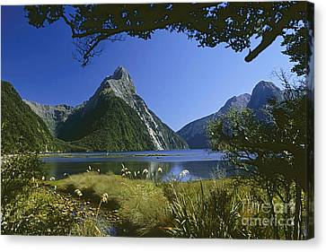 Canvas Print featuring the photograph Milford Sound  New Zealand by Rudi Prott