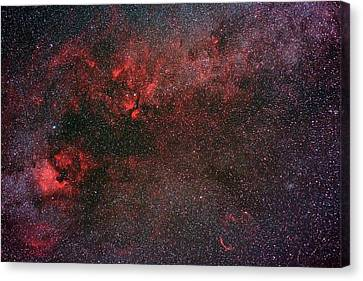 Nebula Canvas Print - Milky Way And Cygnus by Babak Tafreshi
