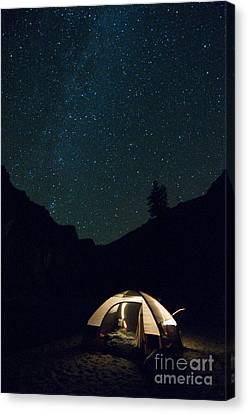 Milky Way And Night Sky Canvas Print by William H. Mullins