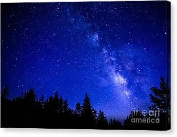 Milky Way Cranberry Wilderness Canvas Print by Thomas R Fletcher