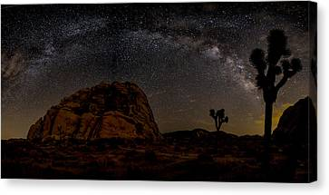 Star Trails Canvas Print - Milky Way Over Joshua Tree by Peter Tellone