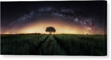 Universe Canvas Print - Milky Way Over Lonely Tree by Iv?n Ferrero