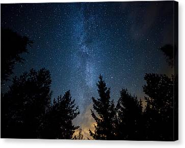 Milky Way Over The Forest Canvas Print