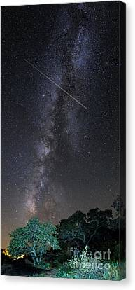 Milky Way Vertical Panorama At Enchanted Rock State Natural Area - Texas Hill Country Canvas Print