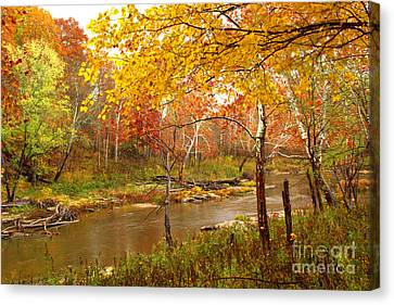 Canvas Print featuring the photograph Mill Creek 1 by Jim McCain