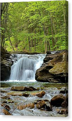 Mill Creek Falls #2 Canvas Print