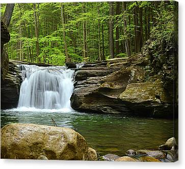 Mill Creek Falls #1 Canvas Print