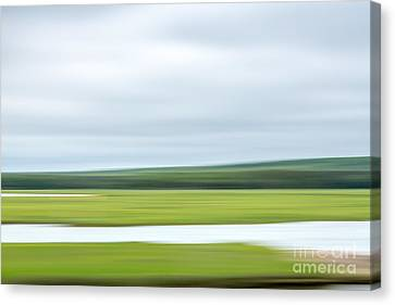 Mill Creek Marsh 3 Canvas Print by Susan Cole Kelly Impressions