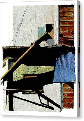 Millamillion Canvas Print by Brenda Leedy