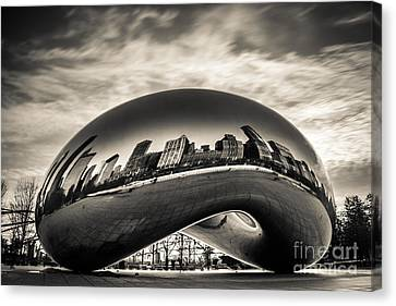 Millenium Bean  Canvas Print by Andrew Slater