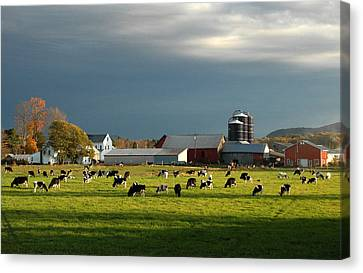 Canvas Print featuring the photograph Miller Farm by Paul Miller