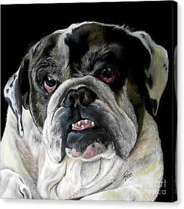 Canvas Print - Millie The Bulldog by Maria Schaefers