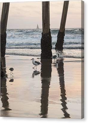 Canvas Print featuring the photograph Milling About by Kevin Bergen