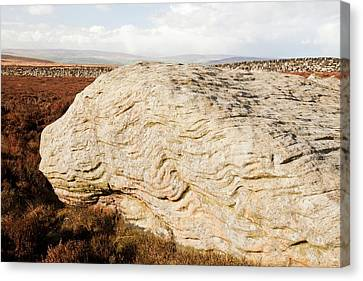 Millstone Grit Boulders Canvas Print by Ashley Cooper