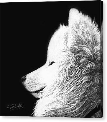 Samoyed Canvas Print by David Griffin