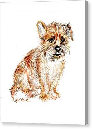 Milo Waits Patiently Canvas Print by Deborah Willard