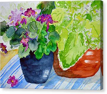 Mimi's Violets Canvas Print by Beverley Harper Tinsley