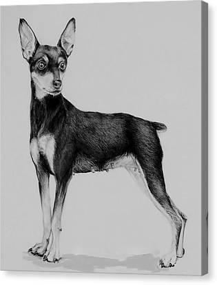 Min Pin Canvas Print by Jean Cormier