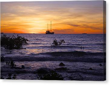 Mindil Beach Sunset Canvas Print by Venetia Featherstone-Witty