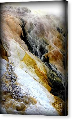Minerals And Stream Canvas Print by C Ray  Roth