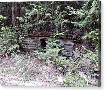 Miners Cabin British Columbia Canvas Print by Reb Frost