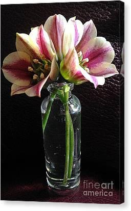 Mini Bouquet Canvas Print
