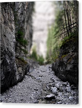 Mini Canyon Canvas Print