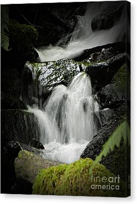 Mini Waterfall 2 Canvas Print
