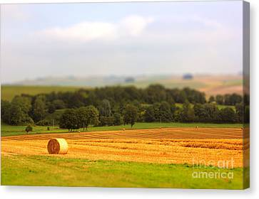 Miniature Countryside Canvas Print by Vicki Spindler